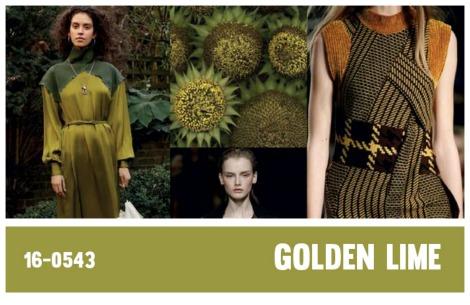 Modekleuren najaar winter 2017-2018; kleurgebruik op de catwalk